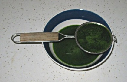 anise hyssop syrup